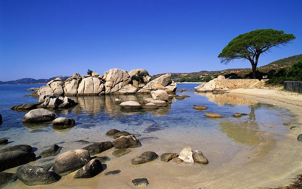 SÉJOUR OENOLOGIQUE EN CORSE - Corse - LA CORSE - 1