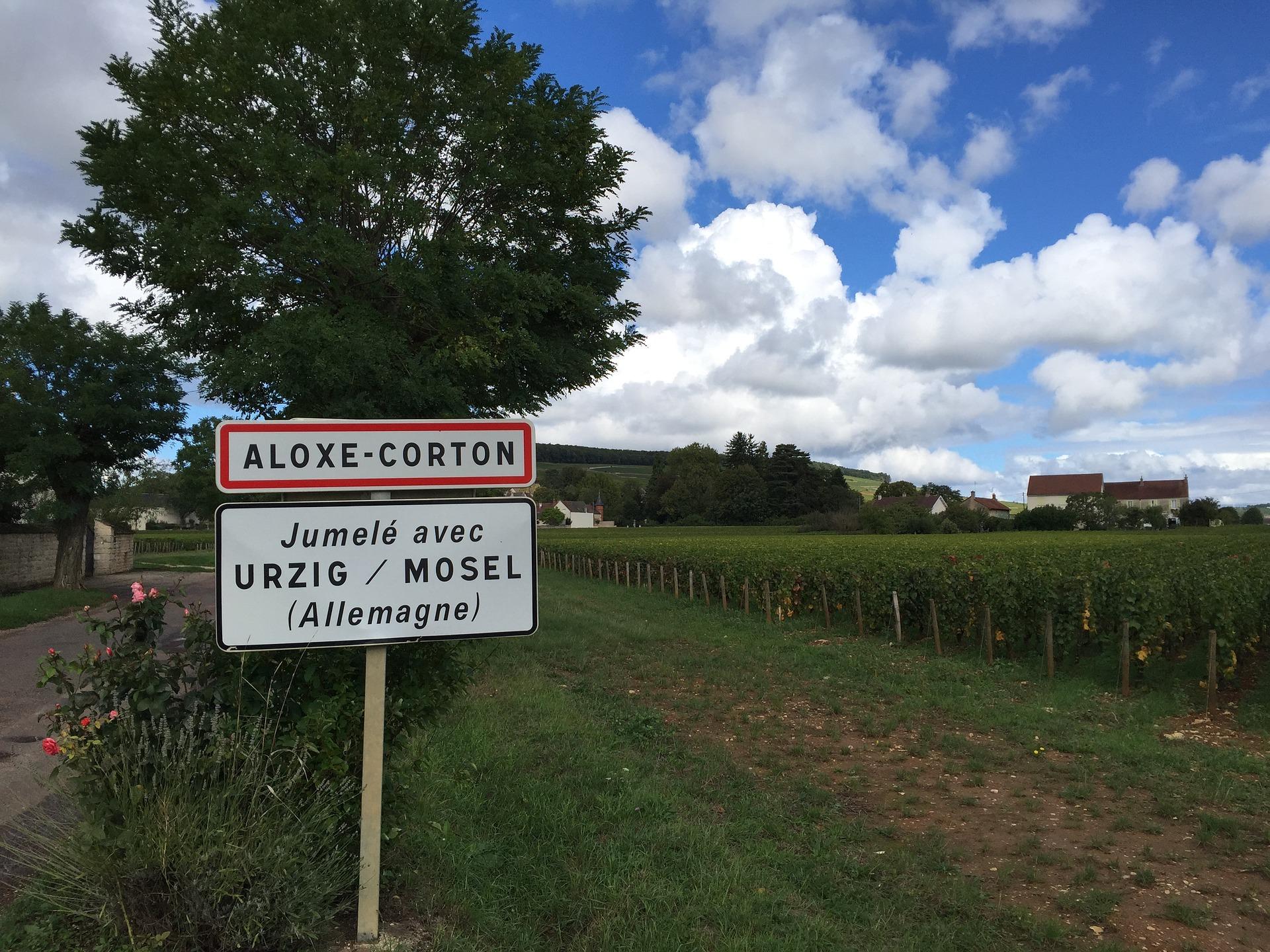 Wine stay in Bourgogne - Burgundy - Burgundy - 3