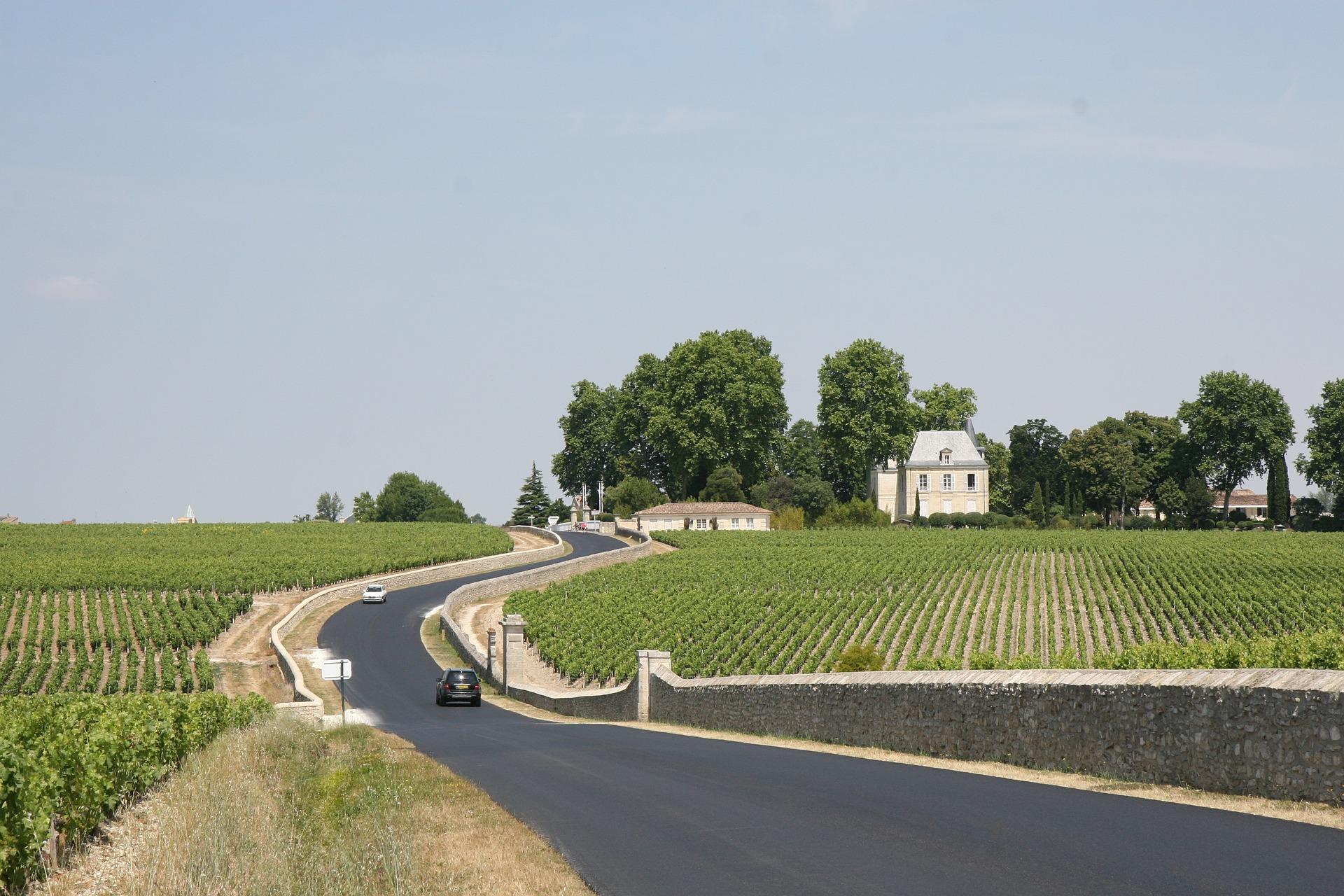 Wine stay in Bordeaux - Bordeaux - wine region - 1
