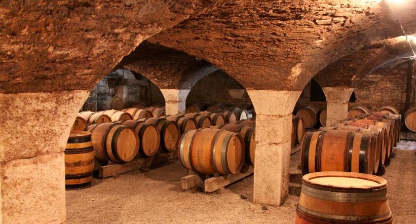 Wine stay in Bourgogne - Burgundy - Burgundy - 2