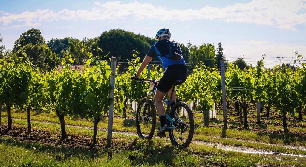 Wine stay in Bordeaux - Bordeaux - Bordeaux - 1