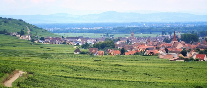 Wine stay in Alsace - Alsace - Wine Regions - 1
