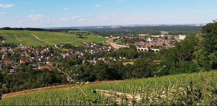 Wine Stay in Loire Valley - Loire Valley - Wine region - 1
