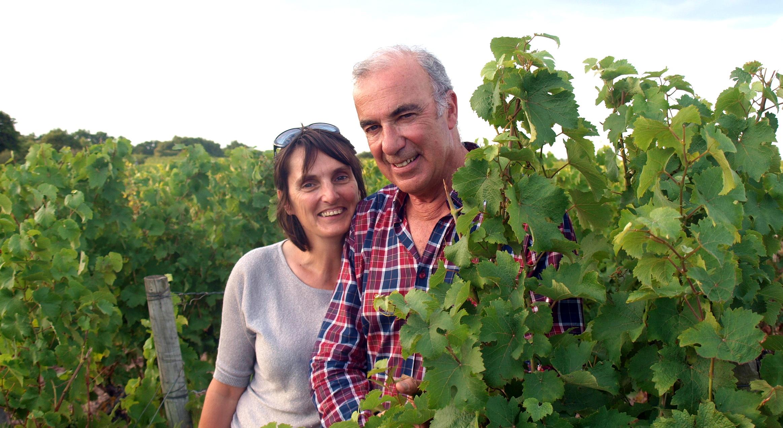 À la découverte de la Loire - Val de Loire - Entre vignes et châteaux - 2