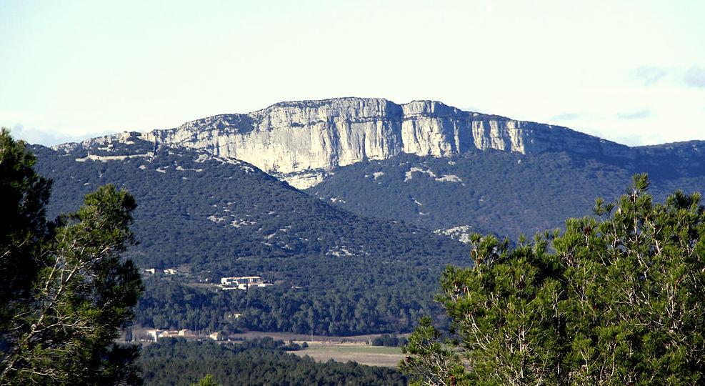 Petite escapade œnologique au Pic Saint-Loup - Languedoc - Bienvenue dans le Languedoc! - 1