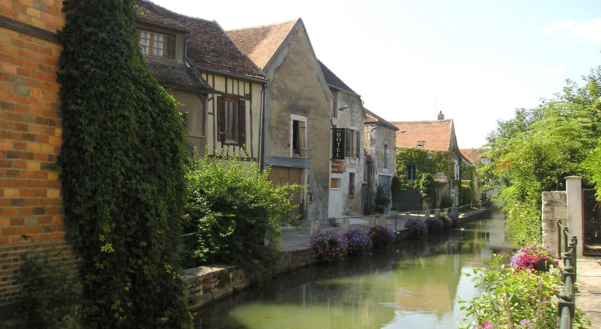 À la découverte de Chablis - Bourgogne - Au cœur des vignes - 3