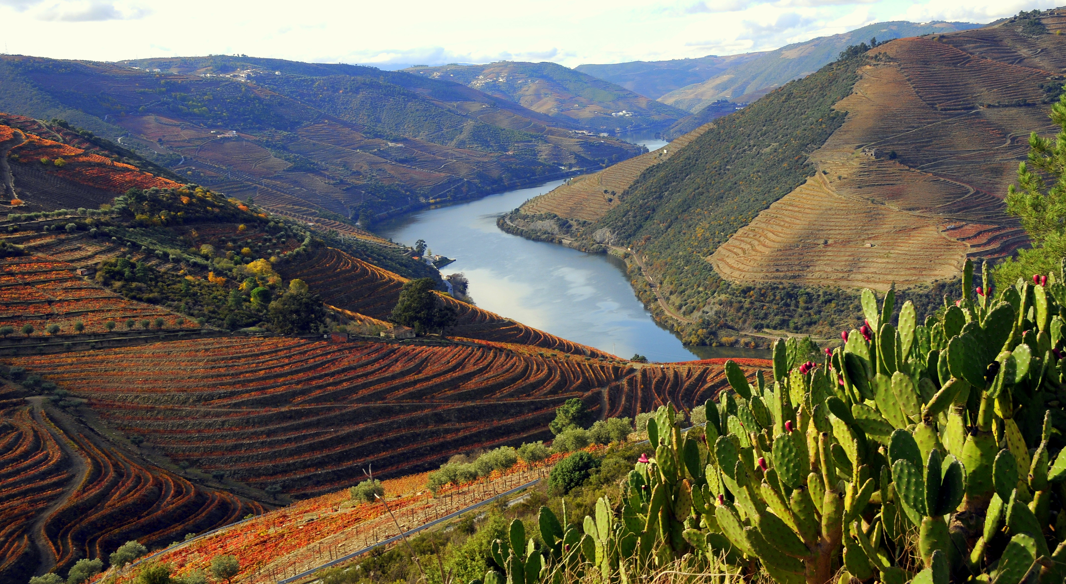 Les secrets du Porto - Portugal - En route pour la Vallée - 3