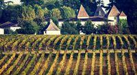 Élégance et finesse au pays des Graves - Bordeaux - Un havre de paix aux portes de Bordeaux - 1