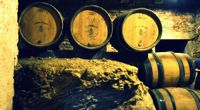 La Bourgogne avec vue sur les vignes - Bourgogne - Sur votre colline perchée - 2