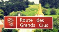 La Bourgogne avec vue sur les vignes - Bourgogne - Au beau milieu des vignes... - 1