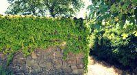 Les Corbières, conviviales et authentiques - Languedoc - Balades aux couleurs du Sud - 3
