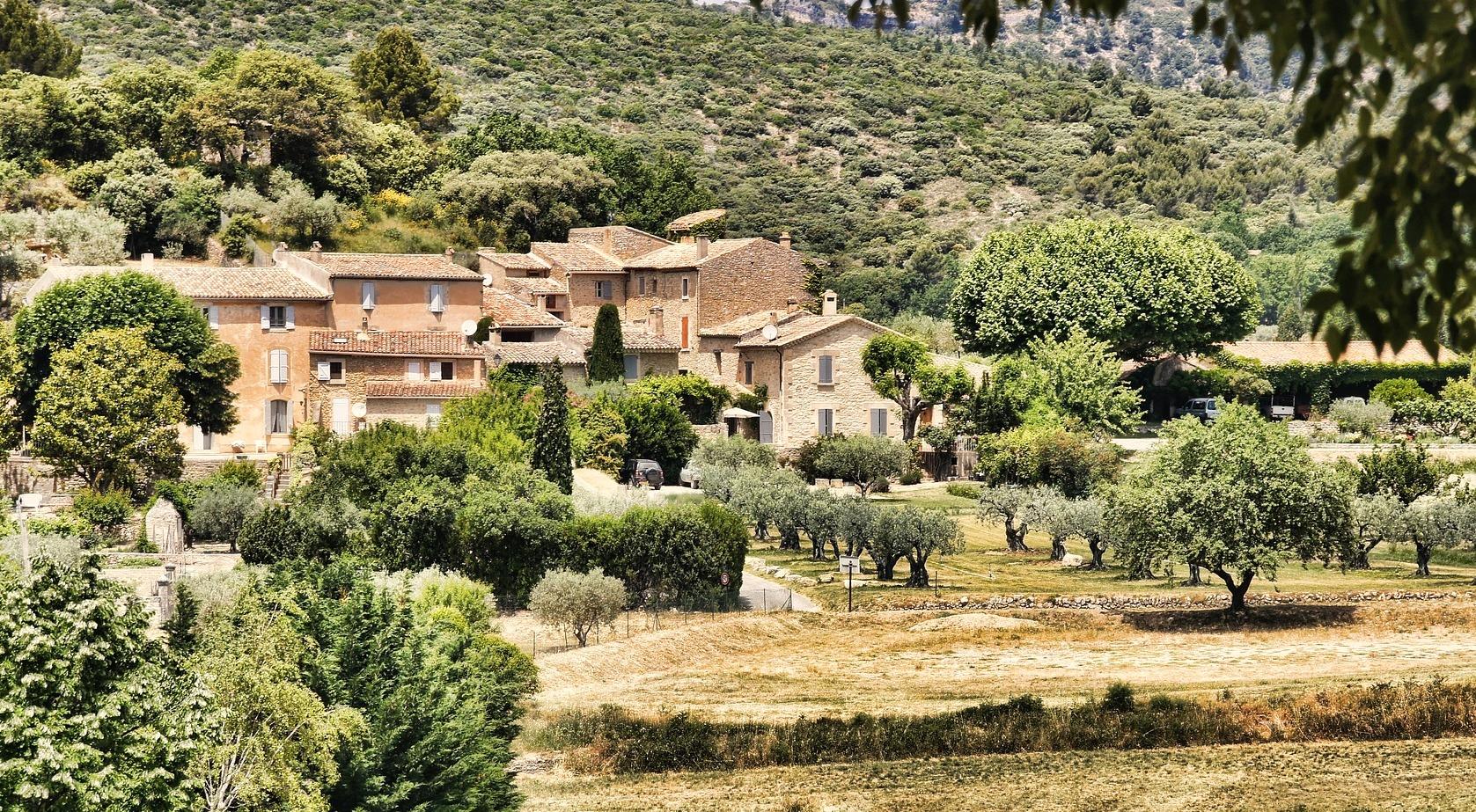 Petite escapade œnologique en Provence - Provence - Bandol, lavandes et calanques - 2
