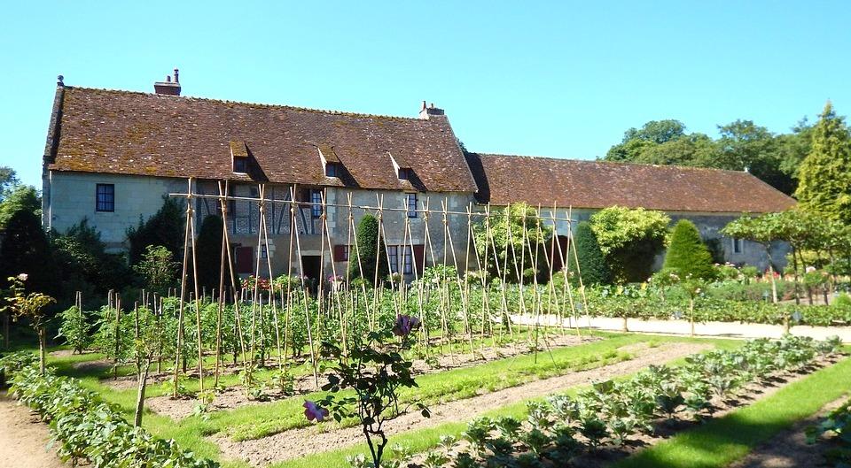Petite Escapade oenologique en Val de Loire - Val de Loire - La Vallée de la Loire, entre vignes et châteaux - 2
