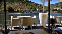 Dans les coulisses des vendanges du Porto - Vallée du Douro - Au boulot ! - 3
