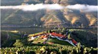 Dans les coulisses des vendanges du Porto - Vallée du Douro - Un peu de repos avant de repartir - 1