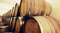 Escapade dans les vignes de Porto - Vallée du Douro - Au rythme du Douro - 1